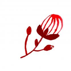 bloem4rood